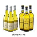 自然派の白ワイン2種 各3本 6本セット