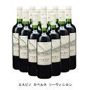 [12本まとめ買い] エスピノ カベルネ ソーヴィニヨン 2018年 ビーニャ ウィリアム フェーヴル チリ チリ 赤ワイン フルボディ チリワイン マイポ ヴァレー チリ赤ワイン カベルネ ソーヴィニヨン 750ml