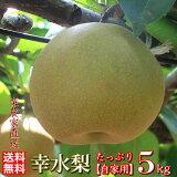 幸水 5kg【自家用】送料無料 ※本州に限るみやびのワケアリは他店とは、ひと味違います! 【予約限定】幸水梨 和梨 生産者直送 茨城こだわりの梨を生産者が旬を見極めおいしい梨をお届け。