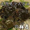 ◎天然活モクズガニ(オスメス混合)・もくずがに・川ガニ1kg(5〜10匹) 【林屋】