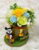プリザーブドフラワーディズニーキャラクターアレンジ庭の手入れ誕生祝い、母の日、父の日、敬老の日、結婚祝い