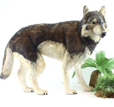 【HANSA】リアルぬいぐるみ森林オオカミ 105cm
