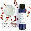 化粧品原料専門店 ヒアルロン酸配合ローションベース(100g)