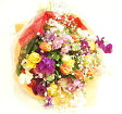 おまかせ花束 季節の花束30本 送料無料◎ラッピング・メッセージカード無料 楽ギフ_包装 生花 花束 花 お花 フラワー 【祝い】プレゼント の日 ギフト【フラワーギフト】【RCP】02P01Oct16