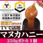 UMF5+�ޥ̥��ϥˡ�250g������̵����ŷ��ǰ��ͤ�ĩ���ӥ塼��ŵͭŷ��˪̪�ޥ̥�UMF5+ʬ�Ͻ��դ��Ϥ��ߤĥϥ��ߥĥ˥塼�������ɡ�RCP��02P23Apr16