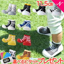 \更に5倍/Baby feet (ベビーフィート) 11.5cm ベビーシューズ ベビースニーカー ファーストシューズ トレーニングシューズ【あす楽対応】【ナチュラルリビング】