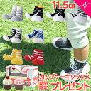 【期間限定】 カップケーキソックス プレゼント 【レビューでもれなく】 ビタットプレゼント Baby feet ...