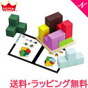 【送料無料】【ラッピング無料】 エドインター [知の贈り物] 賢人パズル 知育玩具 木製玩具 脳トレ【あす楽対応】【@SiteNameJapanese】