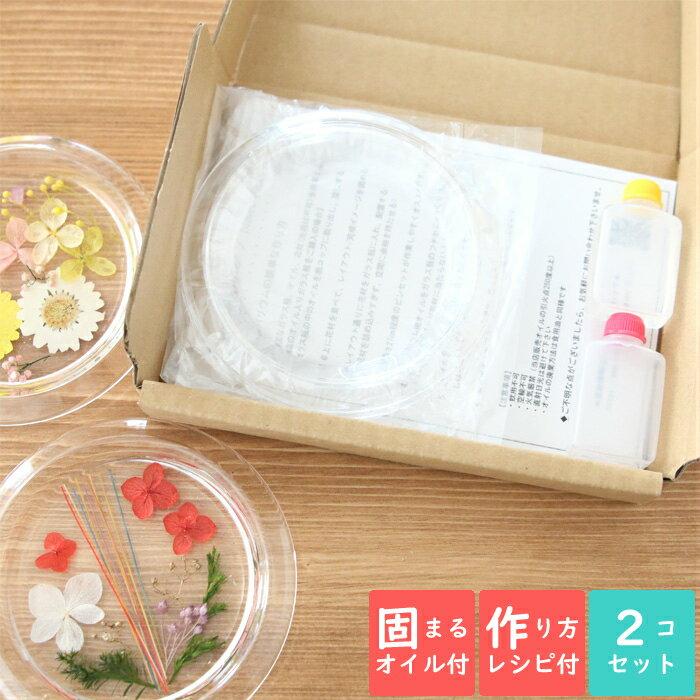 花・観葉植物, ハーバリウム  2