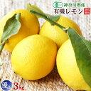神奈川県小田原産有機栽培(有機JAS)レモン3kg優品(B品・訳あり)送料無料・数量限定品