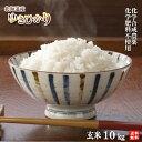 【新米】令和元年産 農薬・化学肥料不使用ゆきひかり玄米10kg【送料無料・数量限定品】