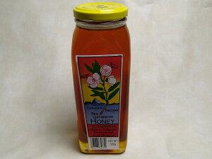 最高級の蜂蜜【レザーウッドハニー】 500g