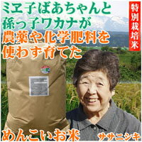 ミヱ子ばあちゃんと孫っ子ワカナが育てためんこいお米・玄米30kg