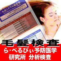 ■送料無料■身体のミネラルバランスを測定!らべるびぃ予防医学研究所分析【毛髪ミネラル検査】