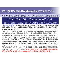 ファンダメンタルサプリメント