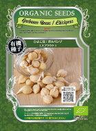 【郵便配送商品】オーガニックスプラウト「ひよこ豆/ガンバルゾ」