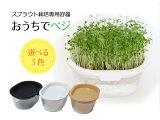 おうちでベジ -スプラウト栽培専用容器- 3色から選べる (郵便配送商品)