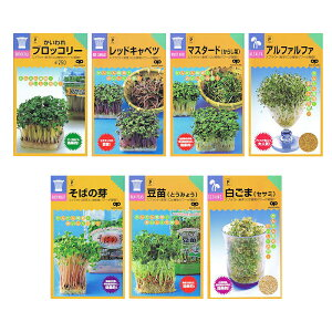 【種】 7種類から選べるスプラウト種 5袋セット! (メール便配送商品)
