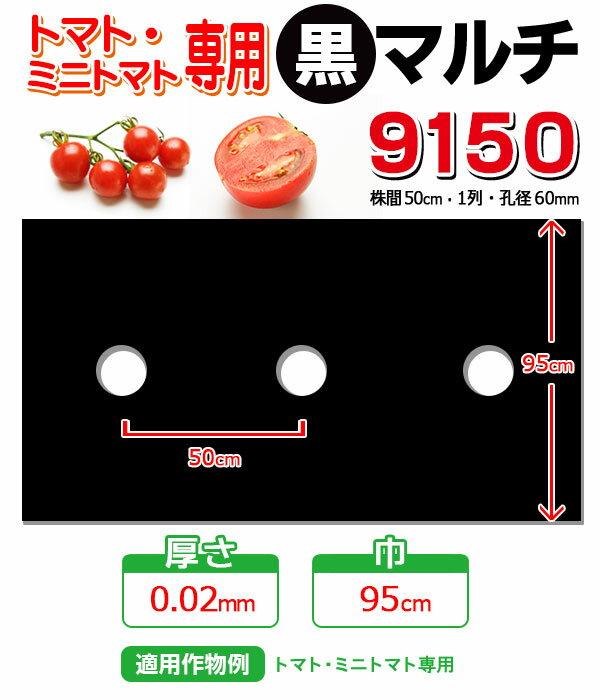 穴あき黒マルチ9150 トマト・ミニトマト用