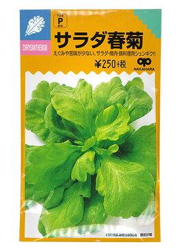 【種】 サラダ春菊の種 40ml(郵便配送商品)※種を複数ご購入いただく場合、送料を再計算します。