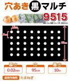 【マルチ】穴あき黒マルチ9515玉ねぎ用(孔径が60mm)(10mまで郵便配送商品)
