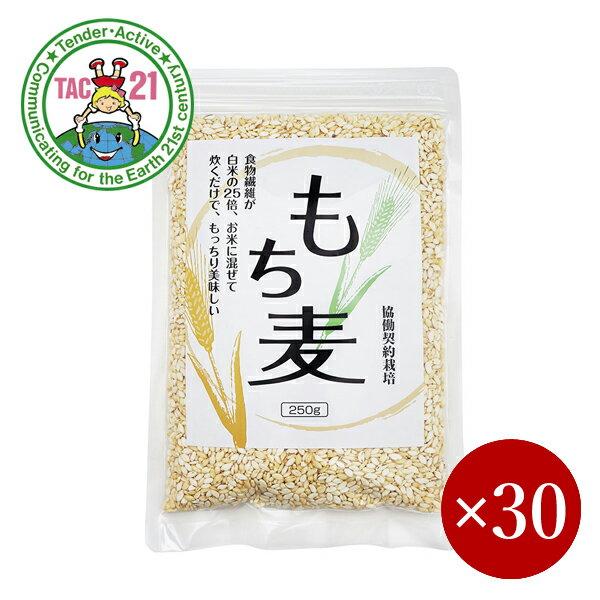 米・雑穀, 麦 TAC21 250g130
