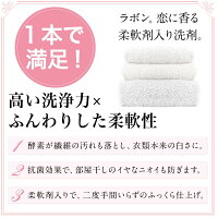 ラボンlavons柔軟剤入り洗濯洗剤シャイニームーンの香り(旧シャンパンムーンの香り)詰め替え750g梅雨柔軟剤