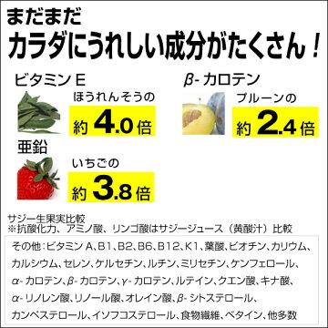 濃いサジーとマイルド味のサジージュース6本セットキュリラ黄酸汁