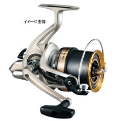 ダイワ(Daiwa) スピニングリールダイワ(Daiwa) 10 ファインサーフ35 太糸