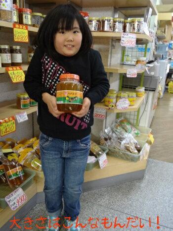 超お買い得!!!国産野山のハチミツ(2kg瓶入り)【smtb-k】【w1】