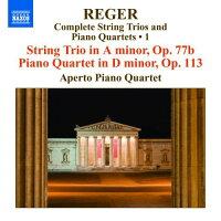 レーガー:弦楽三重奏&ピアノ四重奏全集第1集