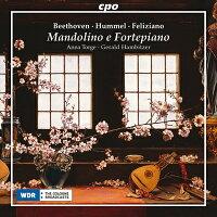 マンドリンとフォルテピアノ