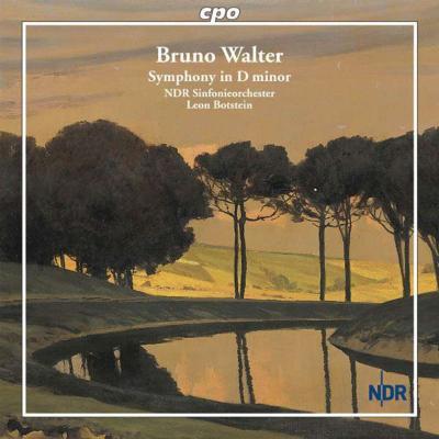 クラシック, 交響曲  (Walter: Symphony in D minor) Import, from US