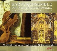 ウィーン交響楽団のバロックアンサンブル