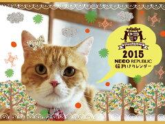 この商品お買い上げで300円阜ねこを救う会に寄付されます。売れるたびに猫が助かる「猫助けカレ...