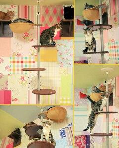 【送料無料】キャットポール Cat Pole  キャットタワー キャットツリー ネコリパブリックで使用中!