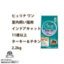 Nsl-one-009