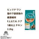Nsl-one-010
