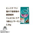 Nsl-one-012