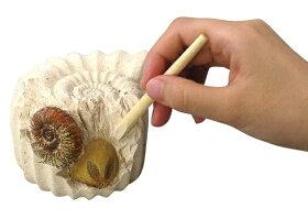 アーテック科学教材キット化石発掘キット056818