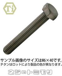 チタン 六角ボルト [ 全ねじ ] M8 × 45 【 1本 】