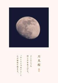 iisazy月見桜[一揃]
