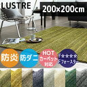 Lustre200200-1