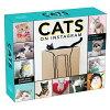 2020猫の日めくりカレンダー☆キャッツオンインスタグラム