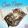 2021猫カレンダー居眠りニャンコ