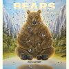 【ロバート・ビッセル】2020熊カレンダーベアーズ