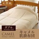 Camel_kakefuton-d_m1