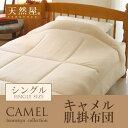 Camel_kakefuton_m1