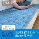 Mikawa_sikipad-main3