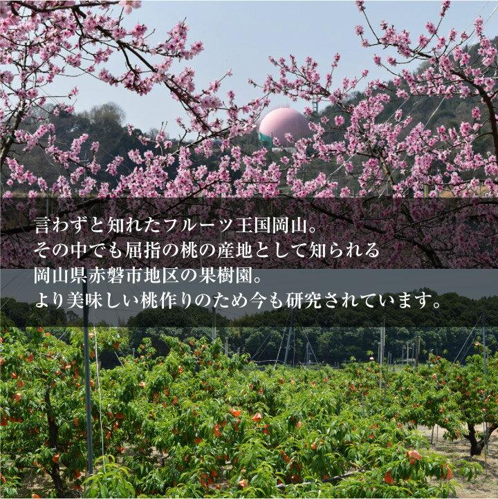 今井農園『冬桃がたり』